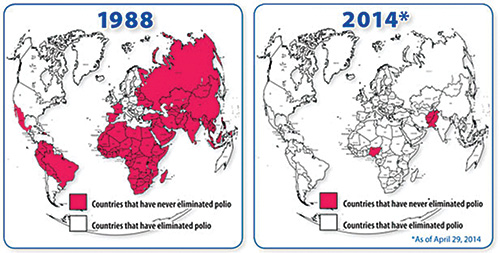 rotary polio map